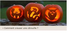 Comment creuser une citrouille Fete Halloween, Pumpkin Carving, Pumpkin Arrangements, Fall, Bricolage, Carving Pumpkins, Pumpkin Topiary