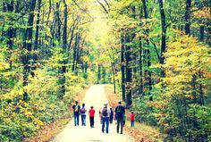 Great Day Trips to New Jersey State Parks and Forests