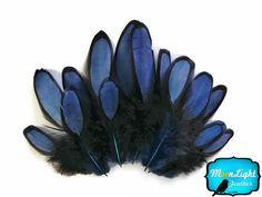 1 Dozen - NAVY BLUE Laced Hen Saddle Feather