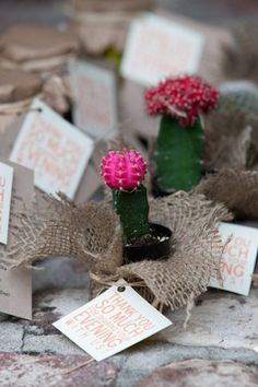 Switch it up from regular plant favors and give your guests a cactus. The prickly plant has a lot of significance because of its long life span. Photo by MCG Photography  via Style Me Pretty