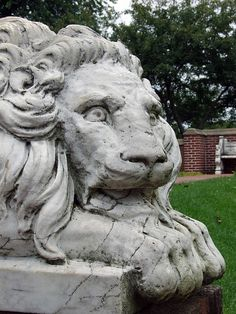 Lion statue - Lynch Park Rose Garden - Beverly, Mass