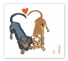 Happy Vday from the Doxies