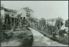 1900-korul-fay a kert felol -3.jpg