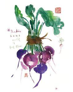 (via illustrated / radish watercolor botanical print)