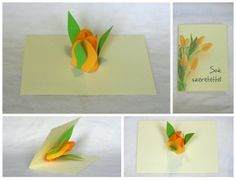 Flower pop up cards by Stephani Imola, via Behance