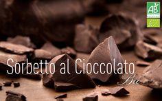 Flavor of the Month - Organic Chocolate Sorbet #amorino