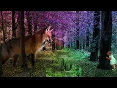 Tervetuloa Kupariketun Youtube- kanavalle nauttimaan ohjatuista meditaatioista ja uudistumisesta 🦊 Haluan levittää kanavani avulla voittoa tavoittelemattomas...