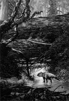 Leptoceratops travels through a jumble of fallen sequoia and bird ferns 80 million years ago by Douglas Henderson