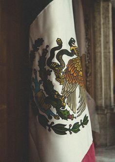 Bandera de México ✿⊱╮ (H-e-r-m-o-s-a) (✿◠‿◠)