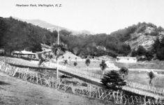 OP_WGTN_034 Wellington City, Garden Gazebo, Houses Of Parliament, Old Photos, New Zealand, Paris Skyline, Old Things, Boat, Island