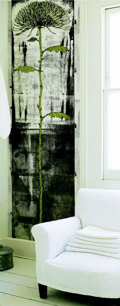 Chrysanthemum x morifolium - Kathryn Fowler - Surface Pattern Design