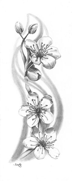 Ideas de dibujo de tatuaje de flor de cerezo × - Ideas de dibujo de tatuaje de flor de cerezo × La mejor imagen sobre healthy l - Tattoo Designs Wrist, Small Wrist Tattoos, Flower Tattoo Designs, Nature Tattoos, Body Art Tattoos, Tattoo Drawings, Circle Tattoos, Cherry Blossom Drawing, Cherry Drawing