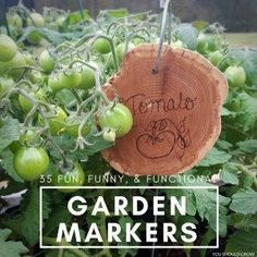 Container Gardening For Beginners + Must have supplies for container gardening. #containergardeningforbeginners #gardeningforbeginners