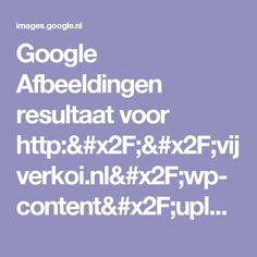 Google Afbeeldingen resultaat voor http://vijverkoi.nl/wp-content/upload_folders/vijverkoi.nl/2012/05/zwemmen_in_een_zwemvijver.jpg