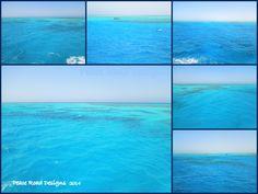 turquoise forever Dahab
