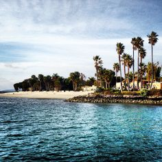 Paradise Point Resort-San Diego California...our wedding spot<3 favorite!