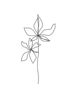 simple continuous line drawing landscape Minimalist Drawing, Minimalist Art, Art Sketches, Art Drawings, Et Tattoo, Line Flower, Daffodil Flower, Minimal Drawings, Kunst Poster