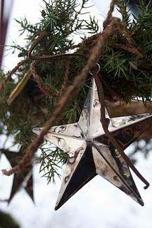 Shiny Christmas Star...Pine.