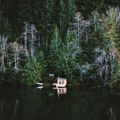 Tiny cabin in the Olympic Peninsula that is only accessible by boat.