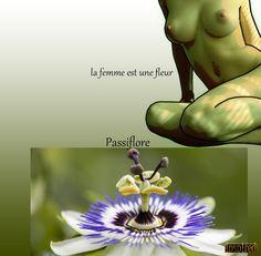 Tout ce qui nous attires: La femme est une fleur 3