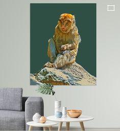 Berberaffe sitzt auf einem Stein in Salem, Deutschland Illustration, Colors, Animals, Painting, Art, Artist Canvas, Digital Art, Canvas Frame, Photo Wallpaper