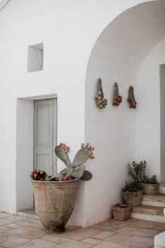 Home Cleaning 509891989060890769 - Masseria_Potenti_Wedding_Puglia_Southern_Italy_by_Lilly_Red_Creative Source by JulieGMB Exterior Design, Interior And Exterior, Puglia Italia, Rustic Outdoor Decor, Southern Italy, Types Of Furniture, Home Remodeling, Creative, Home And Garden