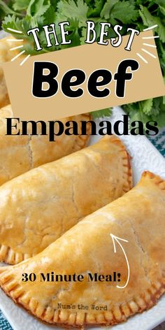 The BEST Beef Empanadas These Easy Beef Empanadas are delicious and use pre-made pie crust for their base. Packed full of great flavor and simple to toss together, they are a worthy Cinco de Mayo meal! Meat Recipes, Mexican Food Recipes, Appetizer Recipes, Cooking Recipes, Freezer Cooking, Mexican Meat Pie Recipe, Easy Meat Pie Recipe, Recipies, Easy Chinese Recipes