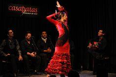 Casa Patas, Flamenco en Vivo, Madrid, España. Octubre de 2014. Maria Jose Franco