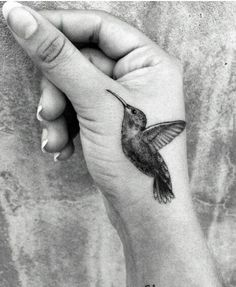 Zelda Williams' hummingbird tattoo for her father