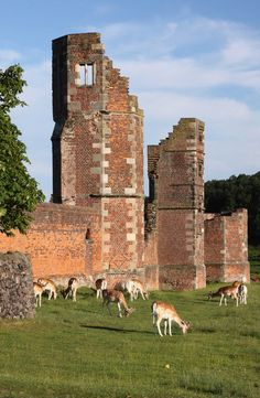 Remaining Towers of Bradgate House