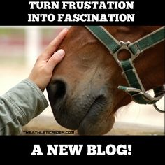 What happens when a Boot Camp of riders teaches the coach how to train? Her horse thanks her for her investment in rider fitness  A new #riderfitness blog from the Athletic Rider