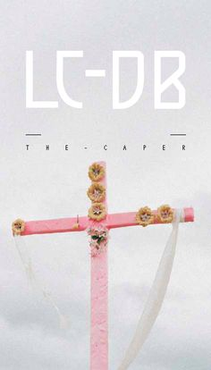LOOK BOOK AW11- THE CAPER