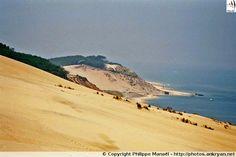 Dune du Pilat, versant ouest - Bassin d'Arcachon (France, Aquitaine, Gironde)