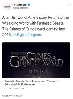 I ammmmm! Harry Potter Fandom, Harry Potter Universal, Harry Potter Memes, Hufflepuff Pride, Ravenclaw, Must Be A Weasley, Crimes Of Grindelwald, Yer A Wizard Harry, My Philosophy