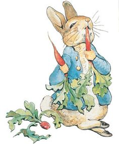 Peter Rabbit by Beatrice Potter, the cheeky little rabbit who steals Mr MacGregor's carrots etc