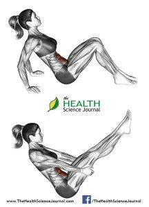 All About Abs – 66 Exercises in Pictures! Bodybuilding, Calisthenics & Yoga (Part - Page 3 of 4 - The Health Science Journal - H Fitness Best Ab Workout, Abs Workout For Women, Ab Workout At Home, Ab Workouts, At Home Workouts, Fitness Exercises, Ab Exercises, Abdominal Exercises, Workout Plans