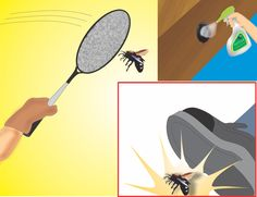 How to Get Rid of Carpenter Bees..something we need for the new house!