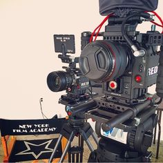 Show and tell #RED #NYFA
