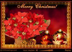 Merry Christmas,Friendship♥