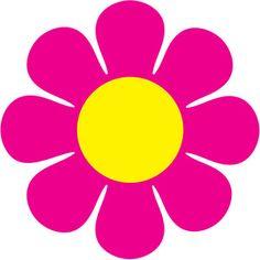 Pink Flower Daisy