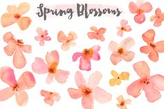 You'll Love This Pink and Orange Watercolor Clip Art Flower Blossoms. These Watercolor Flowers are Perfect for Your Next Project! Just Lovely.