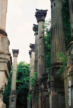 Windsor Ruins in Claiborne County, MS. The ruins are one of the largest antebellum Greek Revival mansion built in the state. Abandoned Plantations, Abandoned Mansions, Abandoned Buildings, Abandoned Places, Southern Mansions, Southern Plantations, Windsor Ruins, Windsor House, Southern Architecture