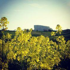 @Gianluca Ugoletti Bismantova in giallo by Turismo Emilia Romagna, via Flickr