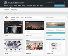 Choose the Right Wordpress Theme for You: 10 Questions | #selfpub #selfpublishing #IndieAuthor