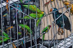 Phlegm creates a massive new mural in Dunedin, New Zealand