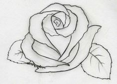 drawings easy drawing pencil rose bunga mawar flowers gambar sketsa flower sketches sketch beginners zum basic very yang draw hitam