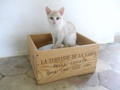 Small Authentic French Wine Crate Cat Bed by cadeauxdecatherine