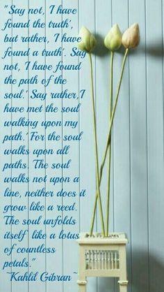 Soulful Reflections