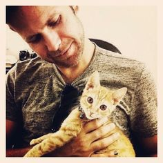★Matt Davis (Alaric Saltzman) - The Vampire Diaries I don't know who's more cute Matthew Davis, Damon Salvatore, Celebrities With Cats, Popular Book Series, Mystic Falls, Cat People, Vampire Diaries The Originals, Delena, Man In Love
