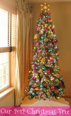 for 2013 I want to do color lights and bright colorful ornaments